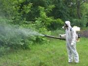 Противоклещевая обработка Лотошино фирма обработать от комаров